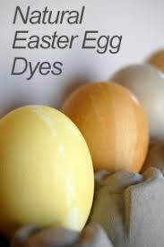 natural easter egg dyes baby gizmo