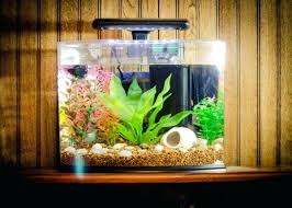 coffee table aquarium coffee tables aquarium table stand end table fish tank aquarium