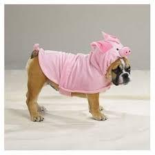 Halloween Costumes Pig Halloween Costume Dog U003e Puppy Toob