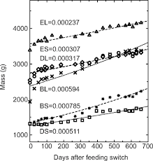 isotopic incorporation rates for shark tissues from a long term