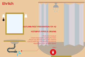 10 autumn and winter diy pest prevention tips