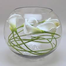 Beta Fish In Vase Large Fish Bowl Vase Best 25 Fish Bowl Vases Ideas On Pinterest
