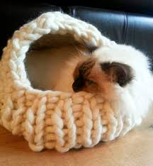 knitting pattern cat cave cat cave knitting revolution