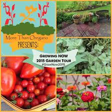 growing now colorado backyard gardener