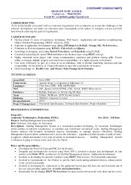 Best Technical Resumes by Technical Resume Summary Contegri Com