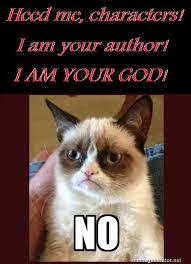 Grumpy Cat Meme No - grumpy cat meme ever on word