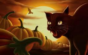 free halloween wallpapers halloween cat wallpaper wallpapers browse