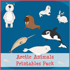 arctic animals printables pack with more than 70 arctic animal