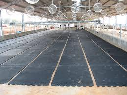 Non Slip Rubber Floor Mats Rubber Floor Mat For Horse Breeding For Cow Breeding