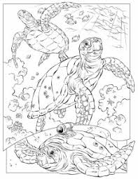 coral reef coloring pages coloring page for kids kids coloring
