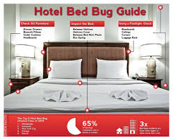 How To Avoid Bed Bugs Bed Bug Prevention Tips Canada Canine Detection