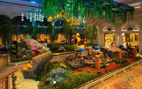 bellagio conservatory brings underwater life to the strip las