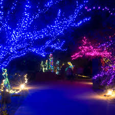 Zoo Lights Phoenix Zoo by Visiting Arizona Az Gov