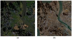 forests november 2017 browse articles remote sensing november 2017 browse articles