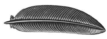 barrette hair clip hair clip barrette hair accessory feather 70mm oberon design