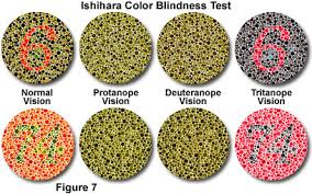 Most Common Colour Blindness Red Light Green Light Or Is That Black Light Yellow Light