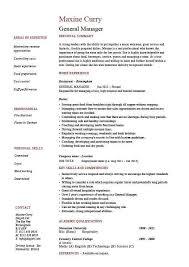 Resume For Metro Pcs Fashion Stylist Resume Sample Fashion Stylist Resume This Resume