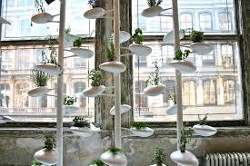 abc carpet home danielle trofe design vertical garden loversiq