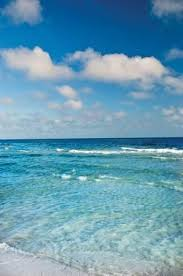 Backyard Burger Panama City Beach 189 Best Panama City Beach Florida Images On Pinterest Panama