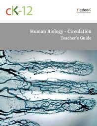 human biology circulation ck 12 foundation