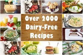 dairy free recipes over 2500 meals desserts snacks u0026 more