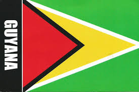 Green Black Red Flag Postcards On My Wall Flag Of Guyana