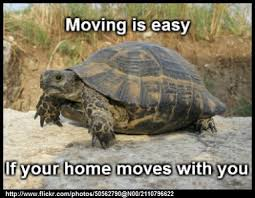 Moving Memes - moving is easy if your home moves with you funny pinterest