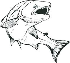 salmon fish coloring page salmon coloring page salmon coloring pages 5 salmon fish coloring