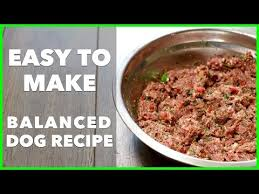 easy homemade raw dog food recipe dog food secrets best dog