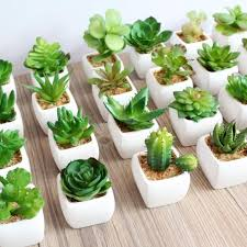 artificial plants artificial succulents land lotus plants grass artificial plants