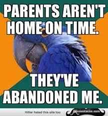 Paranoid Parrot Memes - paranoid parrot meme random pinterest meme and memes