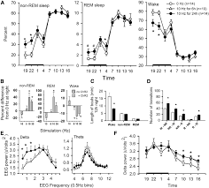 optogenetic stimulation of mch neurons increases sleep journal