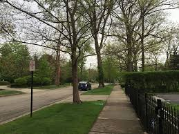 file 2015 05 11 06 41 08 view northwest from in front of the