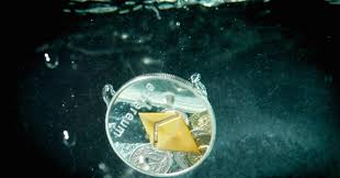 12 best future of money ethereum u0027s co creator predicts a