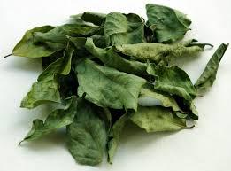 horizontal moribana with dried aspidistra leaf white freesia and
