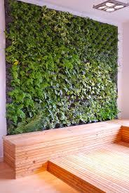 amazing diy living wall herb garden faq on green walls grow living