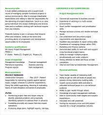 Personal Profile Resume Examples by Program Manager Cv Sample Resume Summary Examples It Project Doc