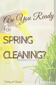 370 best dirrrty spring deep cleaning images on pinterest