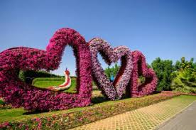 dubai miracle garden opens its doors on november 7 gulfnews com