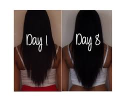 How To Grow A Box Haircut 7 Day Hair Challenge How To Grow Your Hair Fast Easy And