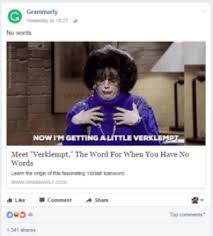 Grammarly Memes - internet meme marketing know the art of memejacking feedough