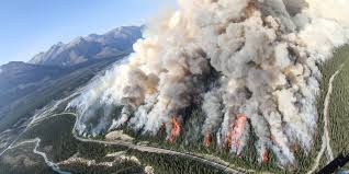 Wildfire Ladysmith Bc by Spreading Creek Wildfire Rips Through Banff National Park Photos