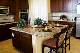 Kitchen Cabinets Espresso Kitchen Kitchen Remodel How To Build Kitchen Cabinets Espresso