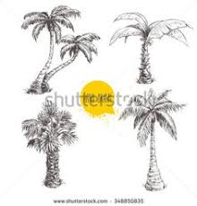palm tree sketches on notebook paper the artwork and paper are on