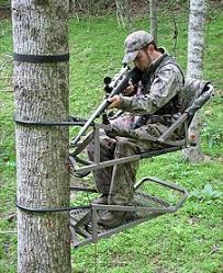 promag treestand treewalker treestands