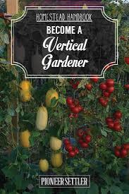 grow a vertical garden homestead handbook