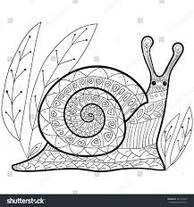 coloring cute snail garden colouring stock vector 421410247