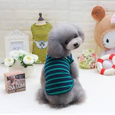 s dog clothes Fashion online sale at NewChic