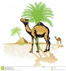 pyramid clipart desert camel pencil and in color pyramid clipart