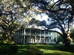 Tucker Oaks Winter Garden Eden Gardens State Park Florida State Parks